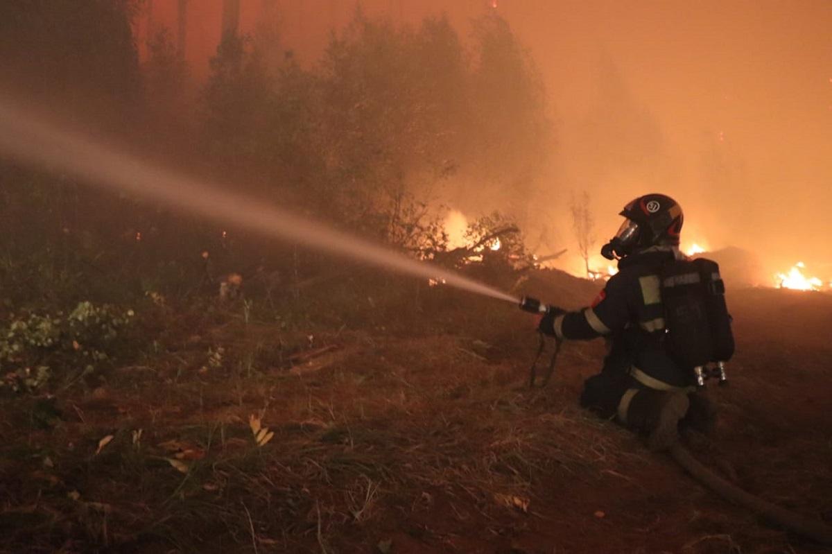 В Тольятти объявили награду полмиллиона рублей за поимку поджигателей леса