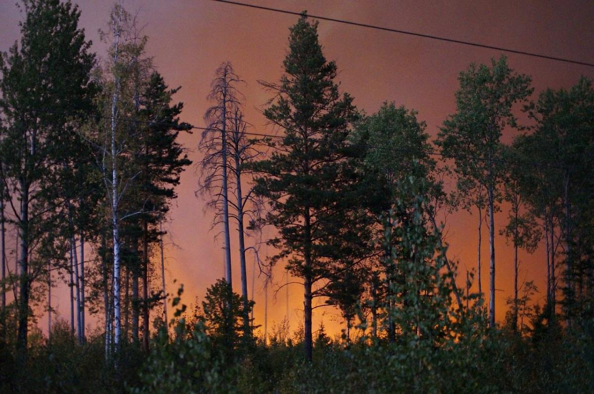 Фронт лесных пожаров находится в 1,5 километрах от Сарова