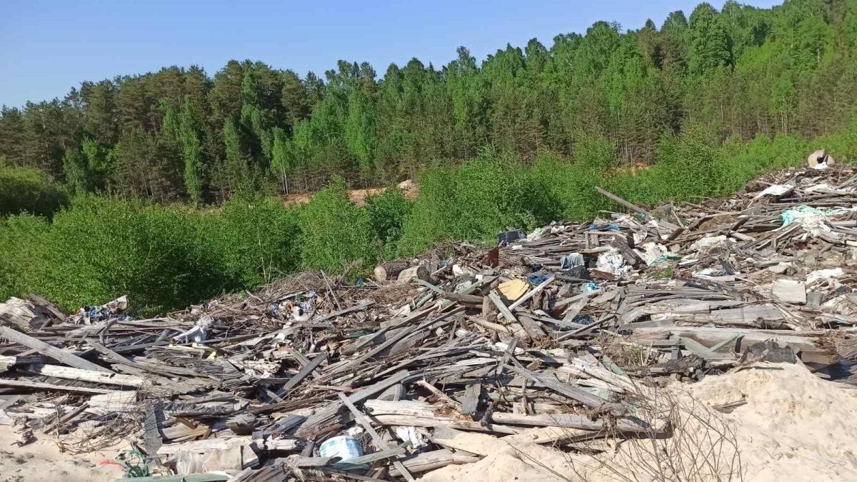 Муниципальное предприятие в Семенове привлекут к ответственности за загрязнение окружающей среды