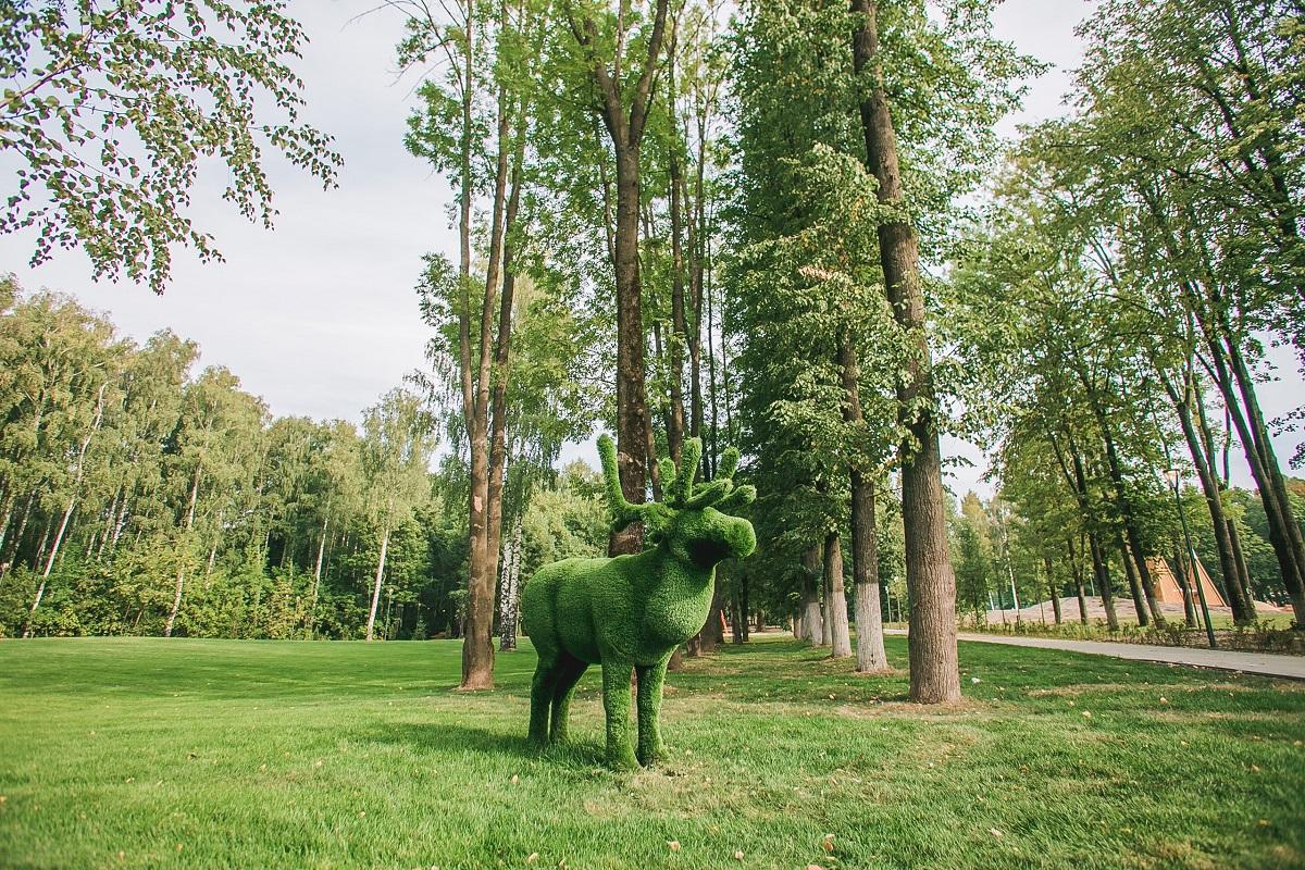 Представители «Швейцарии» рассказали, какая часть парка будет доступна нижегородцам с 23 августа