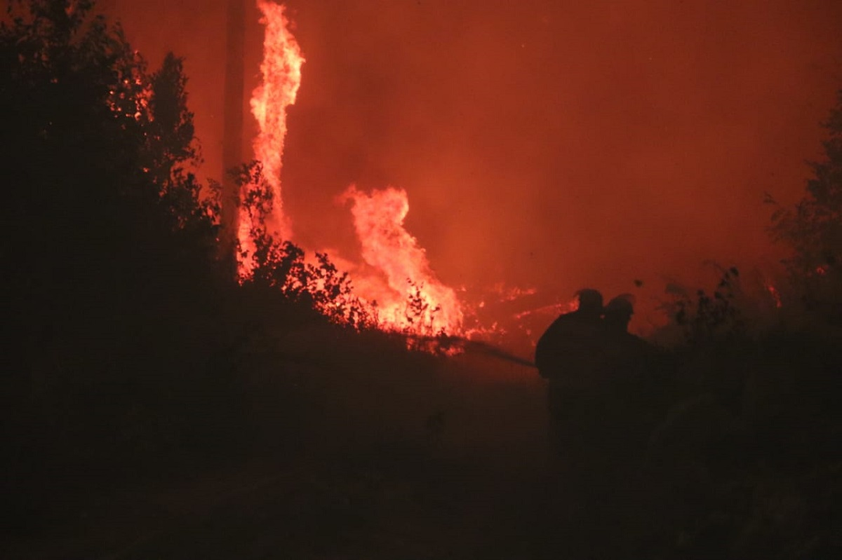 ВПервомайском округе локализовано четыре очага природных пожаров наплощади 365 гектаров