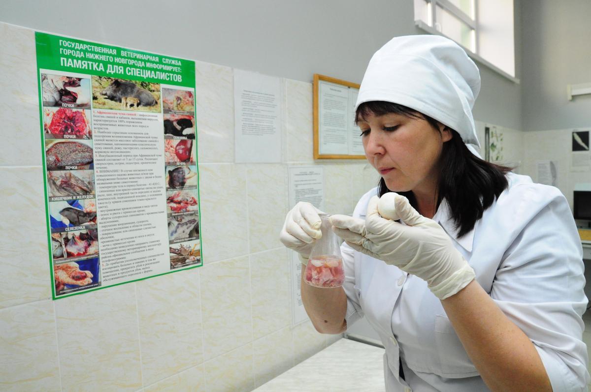 В котлетах нижегородского производства найдены бактерии листерии