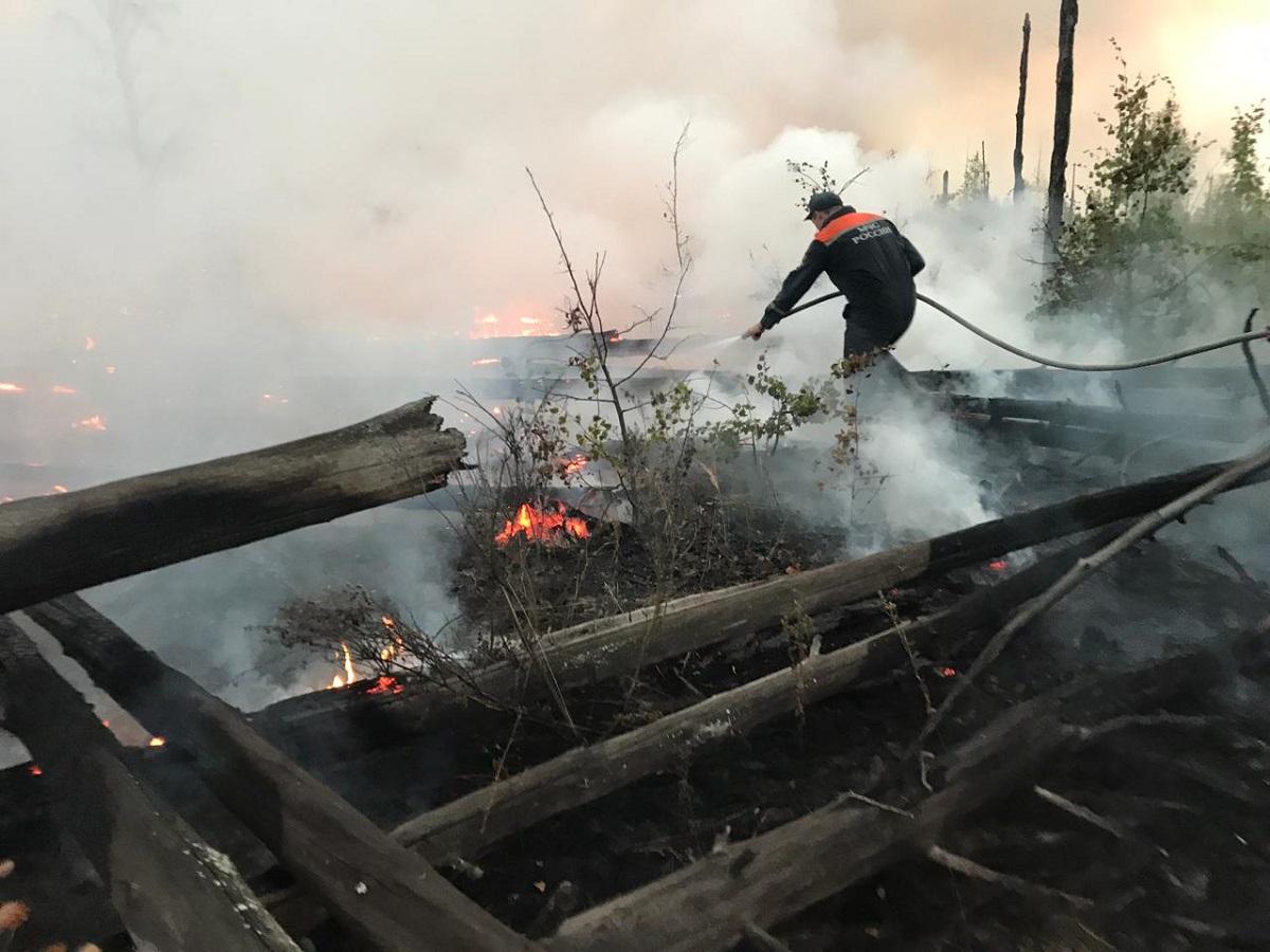 Нижегородские спасатели помогают тушить пожары в заповеднике «Заповедная Мордовия»