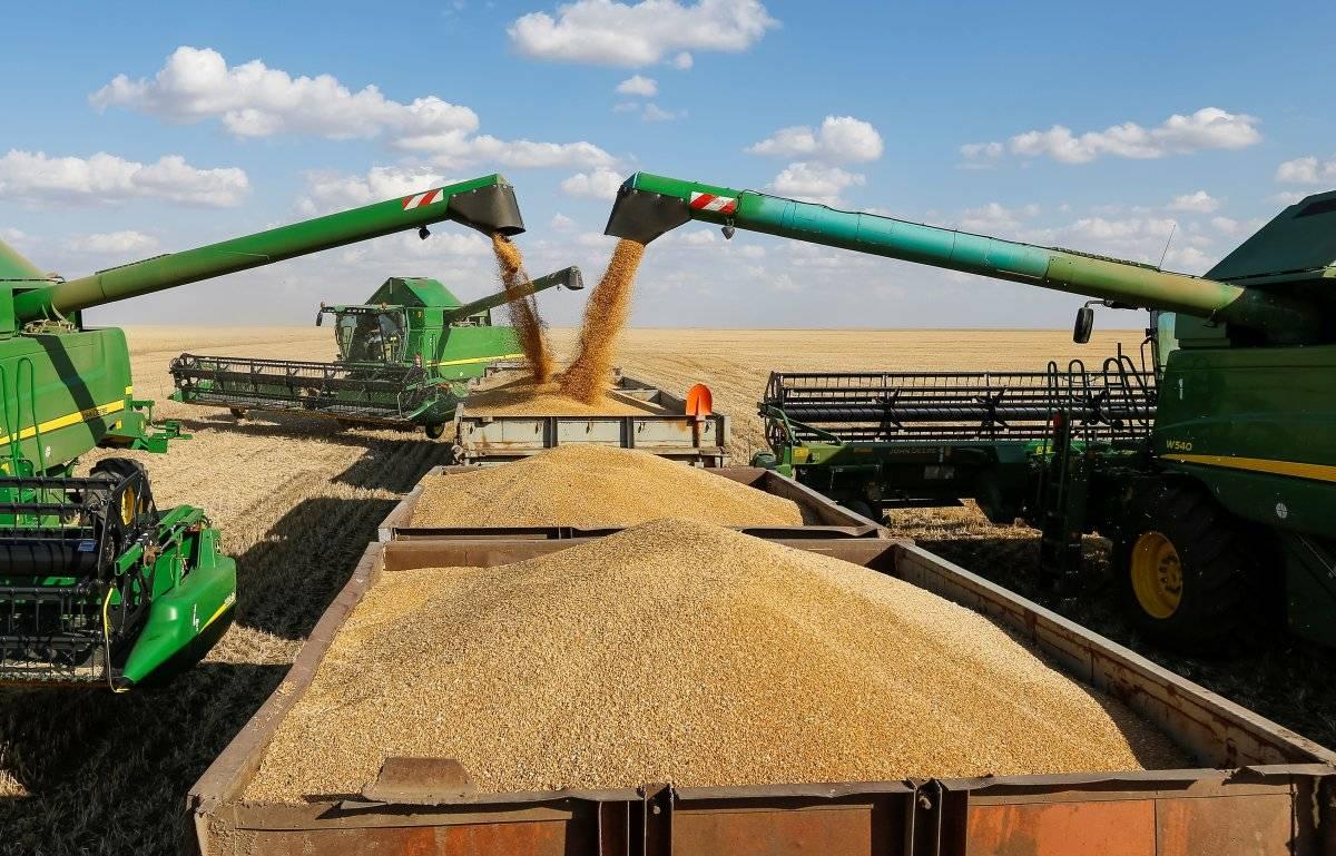 108 млн рублей получит Нижегородская область на возмещение сельхозпредприятиям части затрат на производство и реализацию зерновых культур