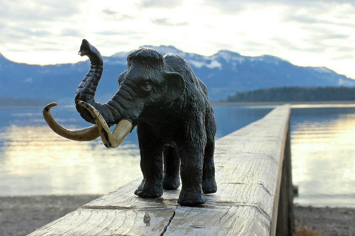 Американские учёные воскресят мамонтов