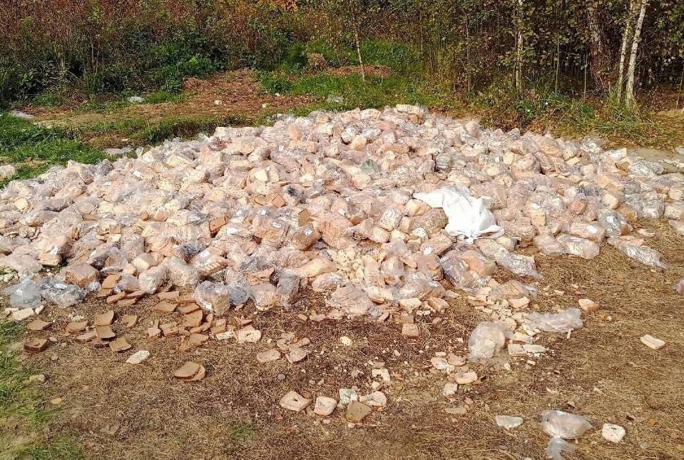 Несанкционированная свалка хлеба появилась в Володарском районе