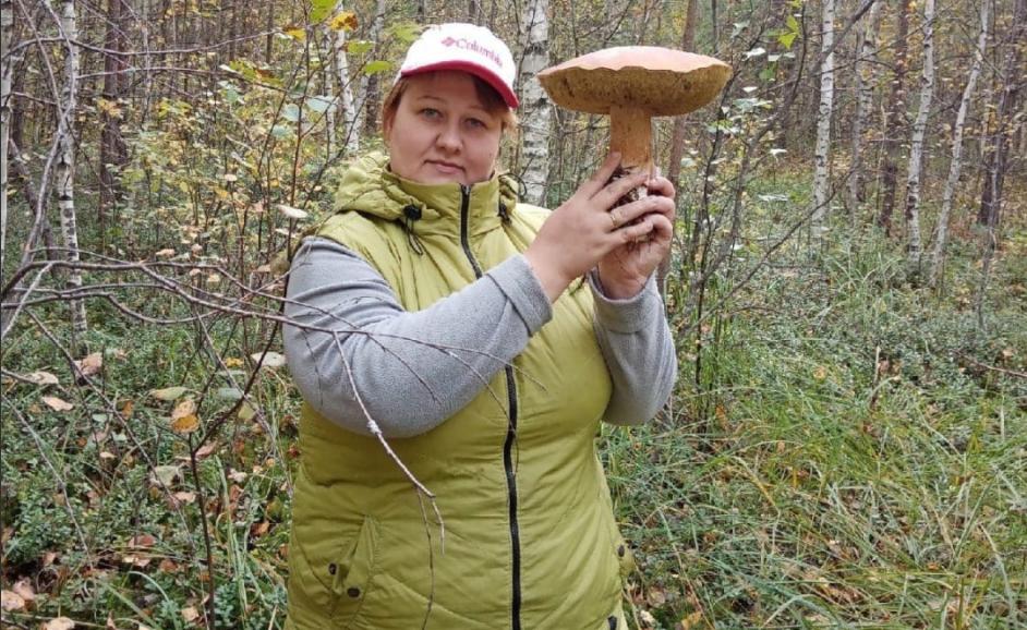 Фото дня: Грибы-гиганты появились в Нижегородской области