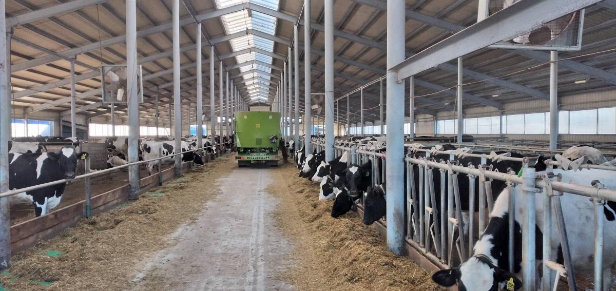 Новый взгляд на привычное: как бережливые технологии помогают в сельском хозяйстве