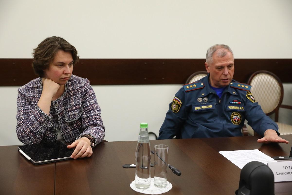 Глеб Никитин иврио главы МЧС России Александр Чуприян провели рабочую встречу