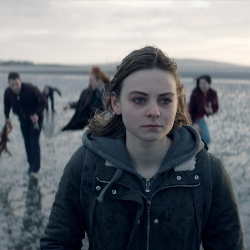 Фестиваль современного польского кино «Висла» пройдет в Нижнем Новгороде