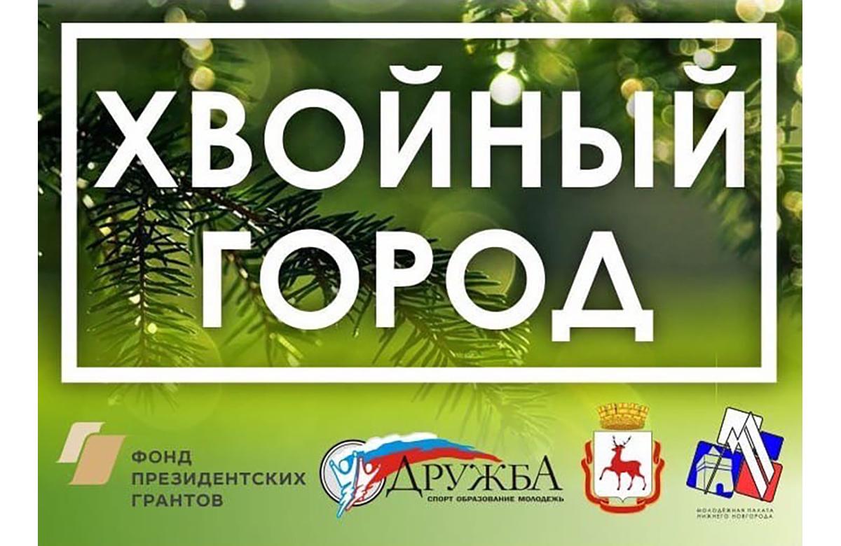 В Нижнем Новгороде проходит голосование на лучший проект хвойной аллеи
