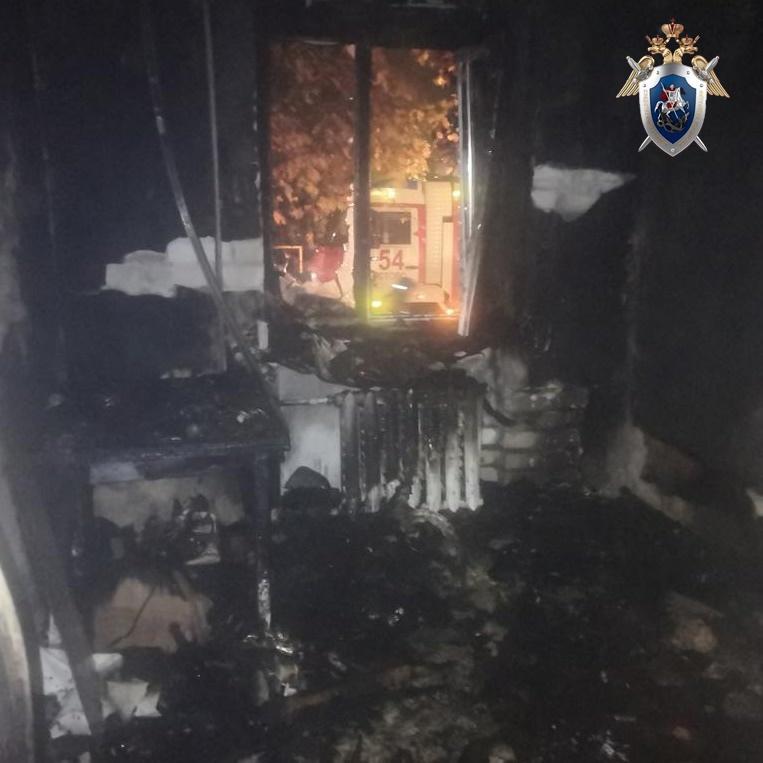 Житель Кстовского района случайно устроил пожар в доме и убил свою мать