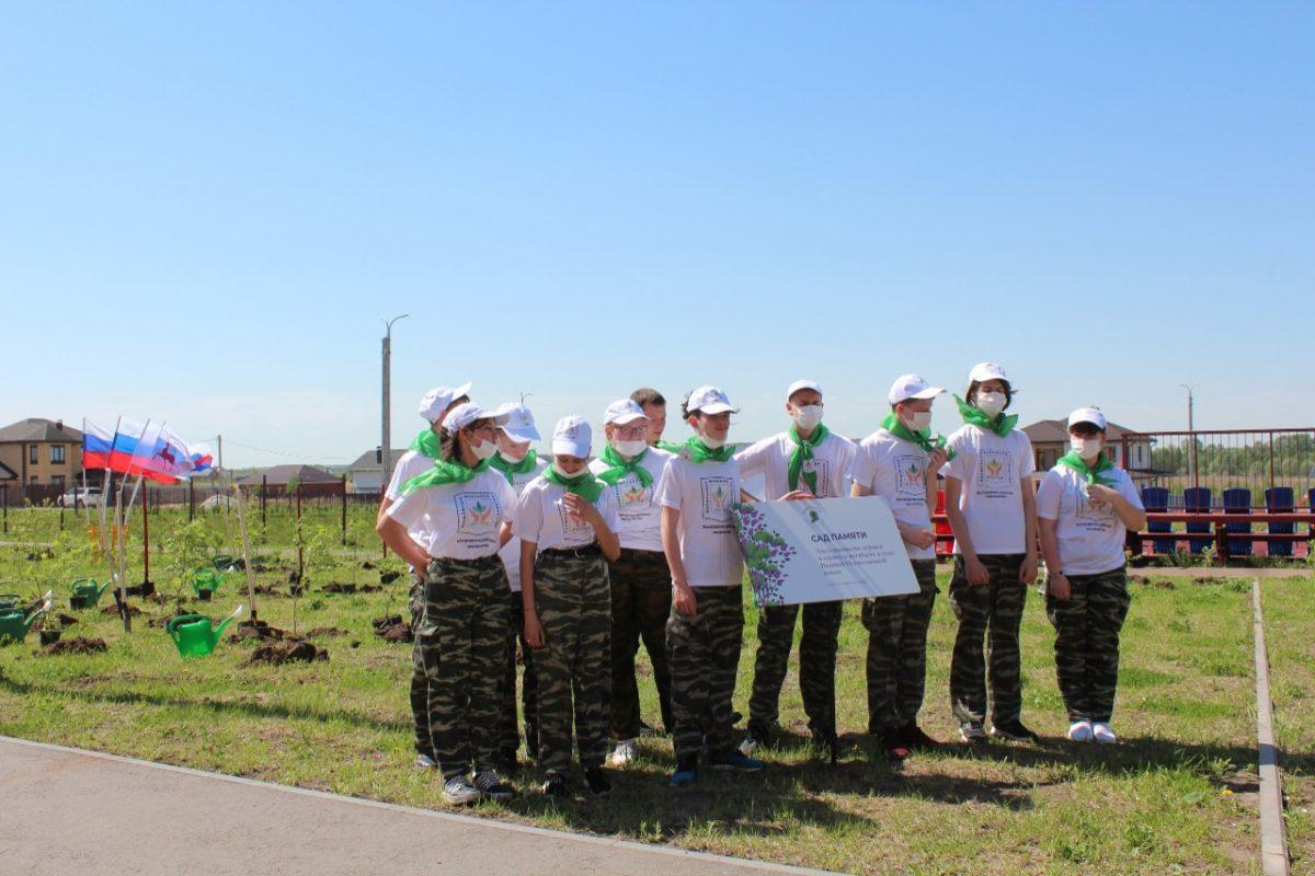 ВНижегородской области создано четыре новых школьных лесничества