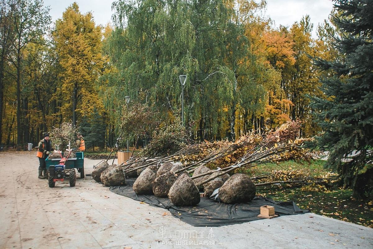 Последний этап озеленения в нижегородском парке «Швейцария» завершится в середине октября