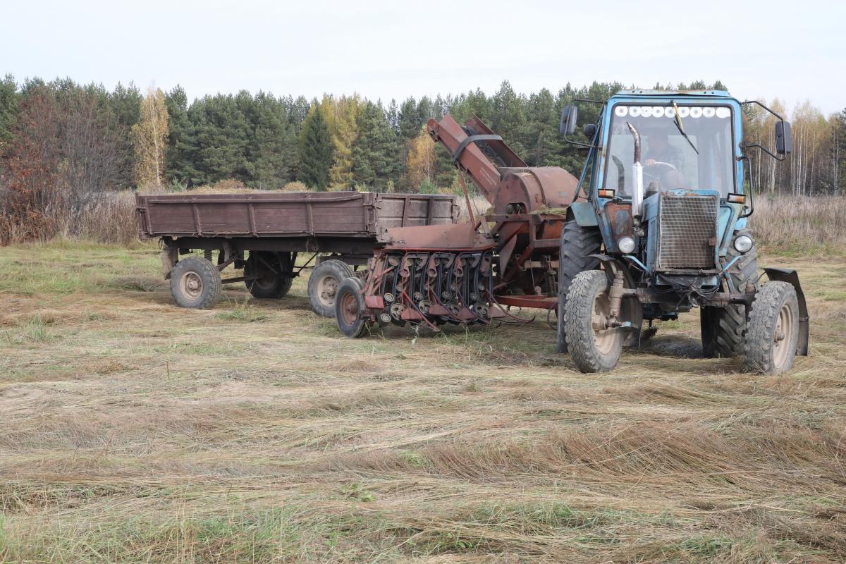 Общий сбор: нижегородские аграрии подсчитывают ущерб от потери урожая