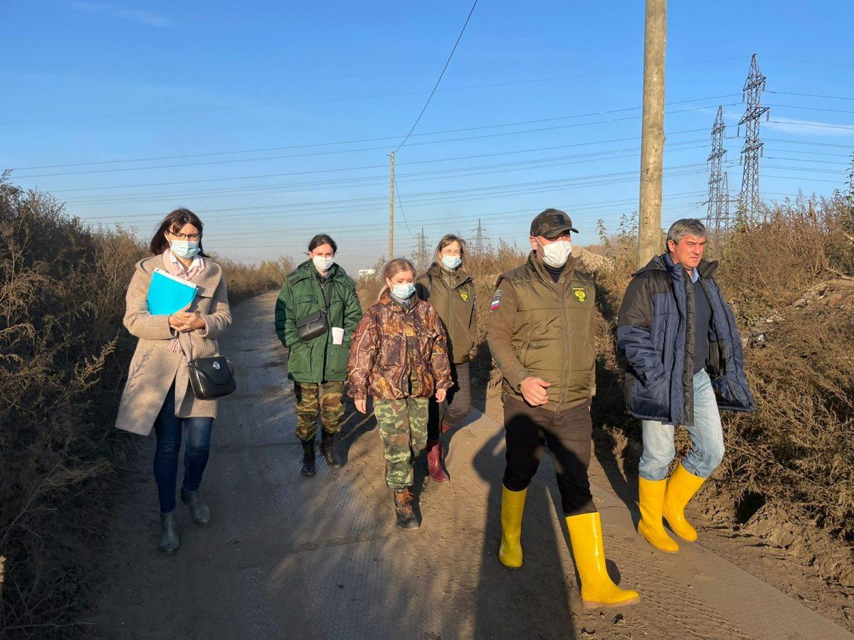 Росприроднадзор организовал внеплановую проверку ликвидации Шуваловской свалки в Нижнем Новгороде